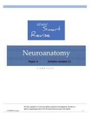 31_Neuroanatomy.pdf