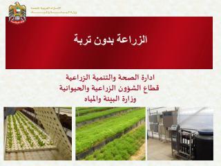 الزراعة بدون تربة الامارات.pdf